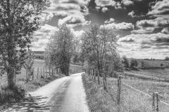 Landstraße bei Bebbingen