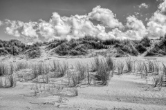 Dünenlandschaft Texel