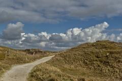 Dünenwanderweg auf der Insel Texel
