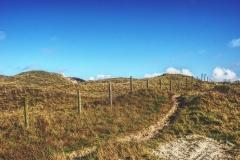 Wanderweg durch die Dünen von Texel