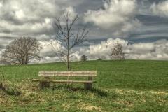 Holzbank im Feld