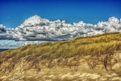 Dünenlandschaft auf Texel