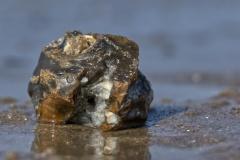 Einzelner Stein im Wasser